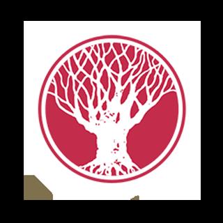Svasthya – Yoga Bonn